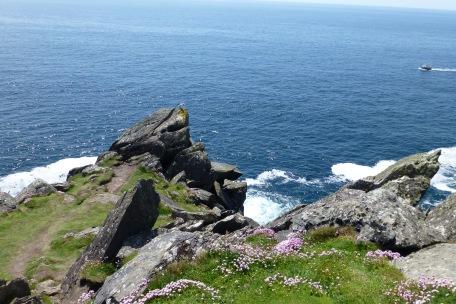 And a good climbing rock below